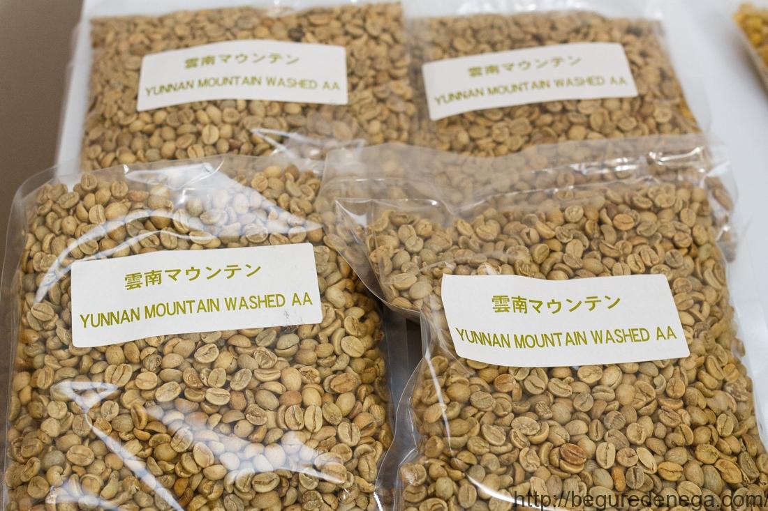【濃縮】コーヒー生豆 中国雲南マウンテン500g【2kg】