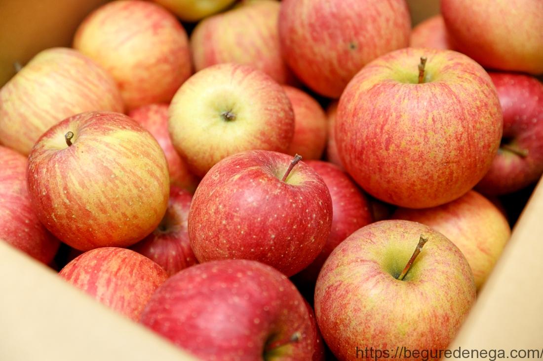 2017年11月購入 ⼭形県産 サンふじ りんご