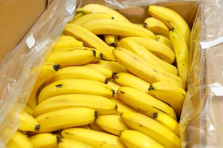 2017年12月購入 フィリピン産 バナナ