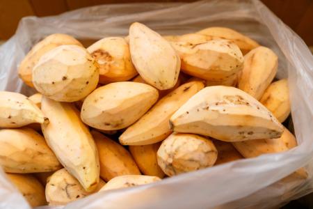 2020年 福岡県産安納芋